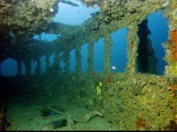 Diving in Croazia