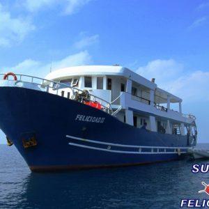 Crociera per subacquei in Sudan