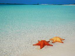 Vacanza diving a Cuba – Cayo Largo e La Habana
