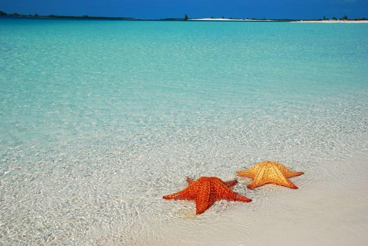Vacanza per Subacquei a Cuba a Cayo Largo e La Habana
