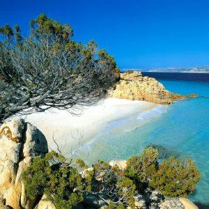 Vacanza diving nell'Isola di Santo Stefano – La Maddalena