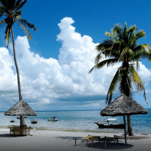 Diving in Tanzania – Mafia Island Lodge