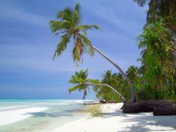 Viaggi diving Maldive