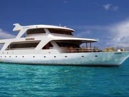 Crociera sub alle Maldive dal 31 marzo all'8 aprile