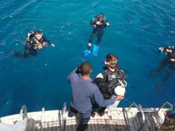 [SPECIALE LUGLIO 2017] Crociera diving in Mar Rosso, volo incluso