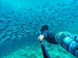 Baja California Diving Expedition