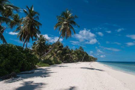 Vacanze per Subacquei alle Maldive in Guest House