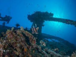 Relitto Thistlegorm Mar Rosso