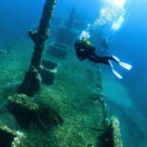 Immersioni diving a Favignana (Isole Egadi)