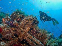 Relitto Numidia Mar Rosso