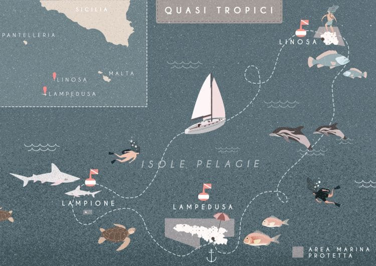 Itinerario: quasi tropici