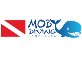 Moby Diving